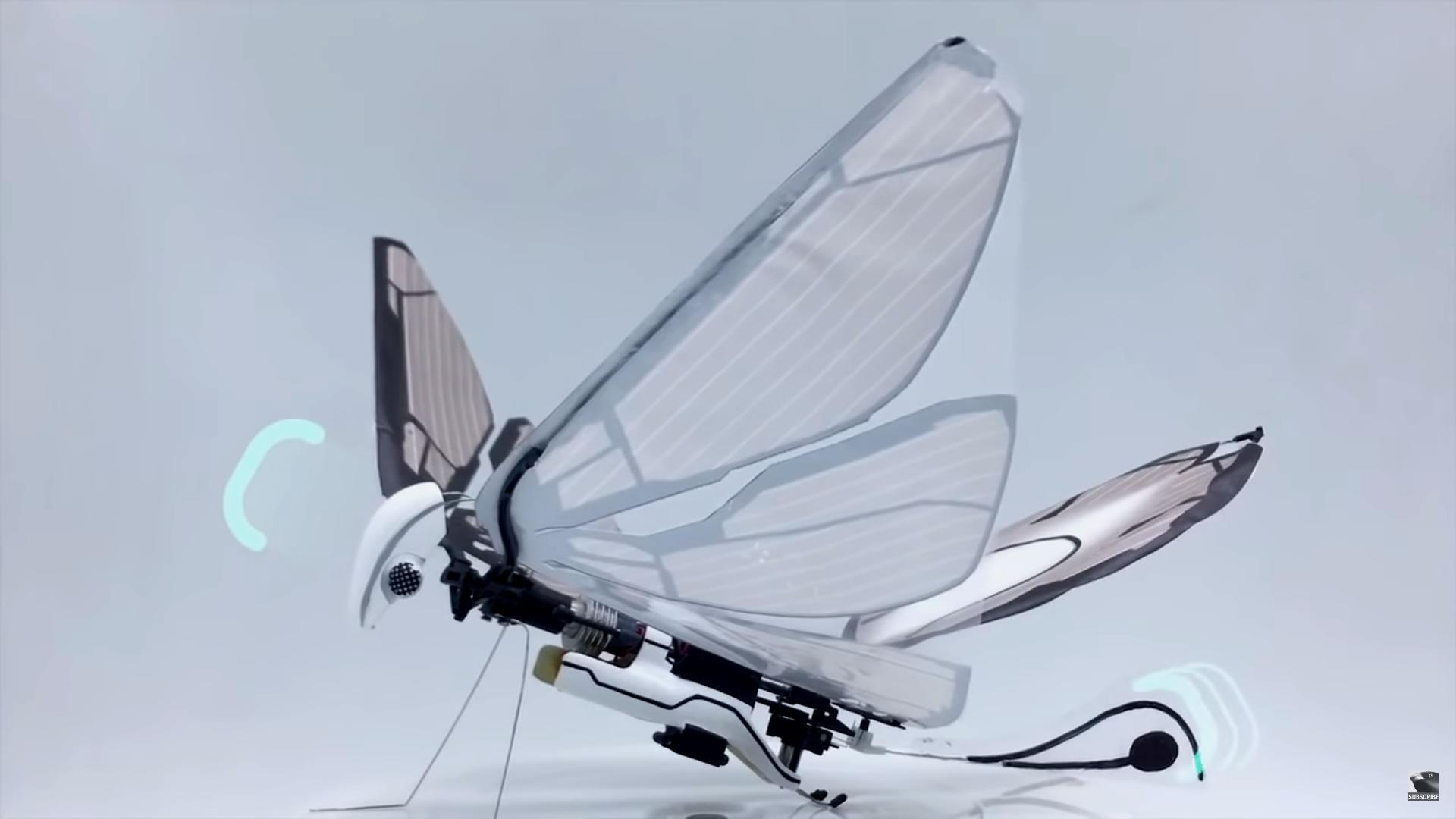很想要吧!可讓你遙控會拍翼而飛的昆蟲玩具MetaFly
